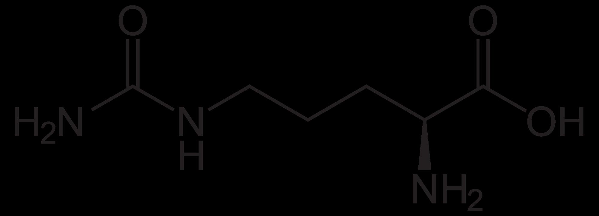 Die Strukturformel der Aminosäure L-Citrullin