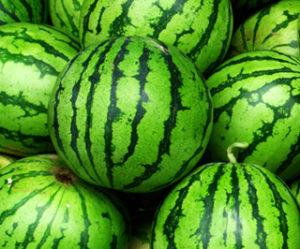Die Rinde der Wassermelone (Citrullus vulgaris) enthält sehr viel L-Citrullin